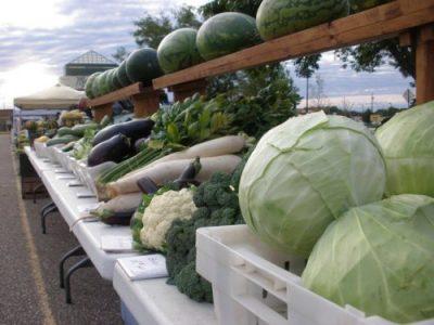 Guldan Family Farm at farmer's market-5