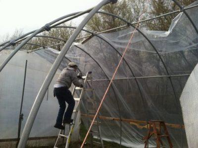 Guldan Family Farm greenhouse